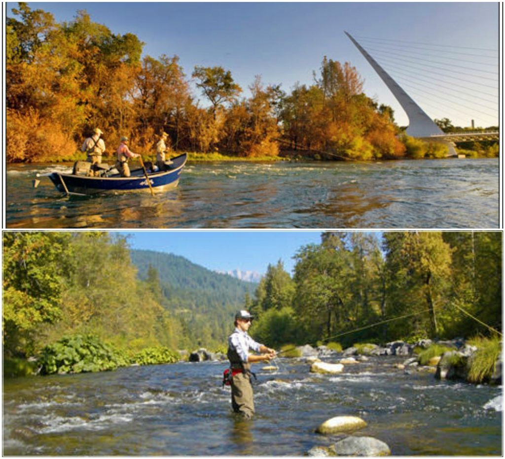 01. Fly Fishing Collage